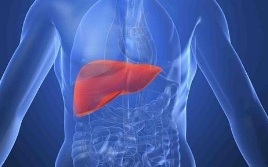 Рекомендуемая диета при болезни печени и поджелудочной железы