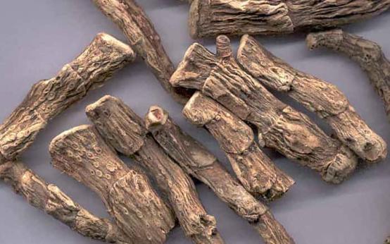Инструкция по использованию корня аира от грибка ногтей