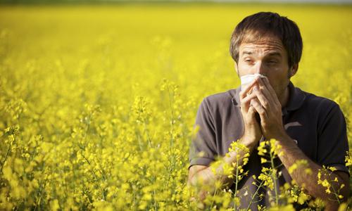 Проблема аллергического ринита