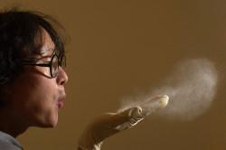 Пыль - причина бронхиальной астмы
