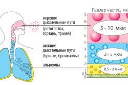 Принцип работы ингаляторов при астме
