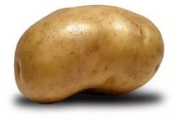 Лечение гастрита картофелем