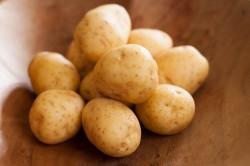 Выбор качественных клубней картофеля для лечения
