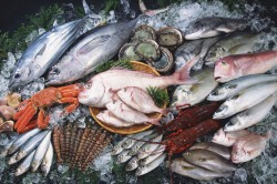 Польза рыбы при заболевании ЖКТ