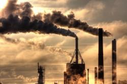Плохая экология - одна из причин появления полипов в кишечнике