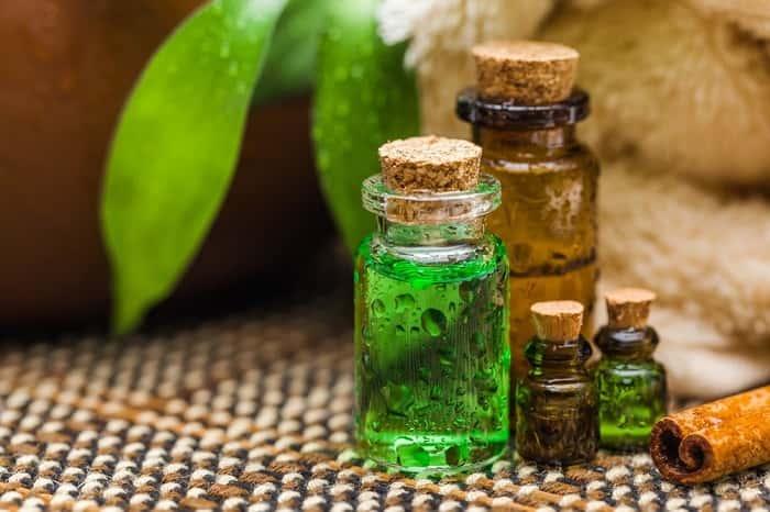 Масло чайного дерева от грибка ногтей: эффективный способ? Рецепты домашнего применения масла чайного дерева от грибка ногтей - Женское мнение